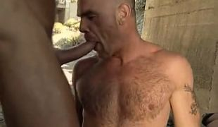 Bear gay deep throats cock under bridge