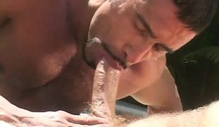 Mature bear gay sucks hard cock in pool