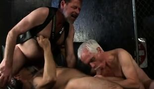Old hairy gays share gay dude