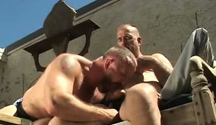 Hairy gay sucks cock of old stud