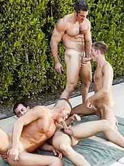 Jerek - Aaron Parker - Colton Ford - Travis Reed in Gay XXX Images