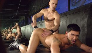 Dominic gets a real treat in this ass slamming fuck with rock hard Adam!