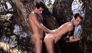 Adam Wilde, Tony Cameron